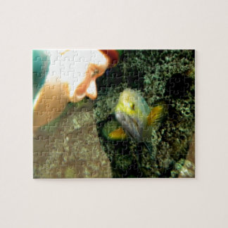 Fish Face gnome Jigsaw Puzzle