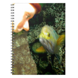 Fish Face gnome Spiral Notebook