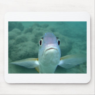 Fish Face Mousepads