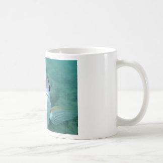 Fish Face Mug