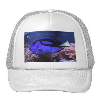 fish fishing sea custom personalize Anniversaries Trucker Hat