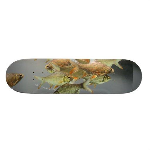 Fish & Fog Custom Skateboard