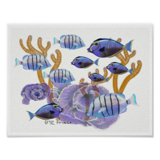 Fish groups Swimming painting 3c Poster