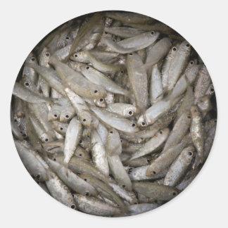 Fish in a Bucket Classic Round Sticker
