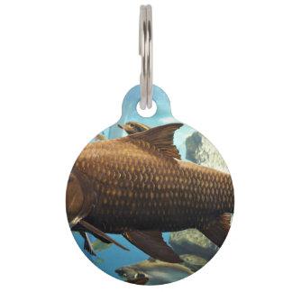 Fish In A Tank Pet Name Tag
