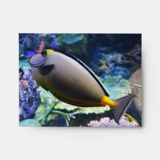 Fish in Aquarium envelopes