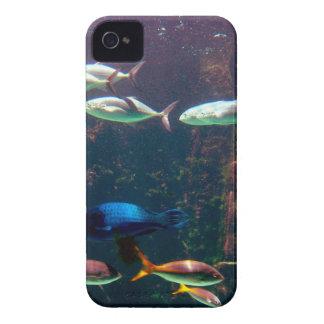 Fish in Aquarium iPhone 4 Case-Mate Case