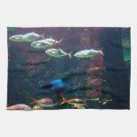 Fish in Aquarium Towels