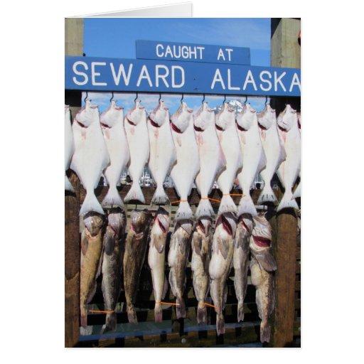 Fish in Seward, Alaska Cards