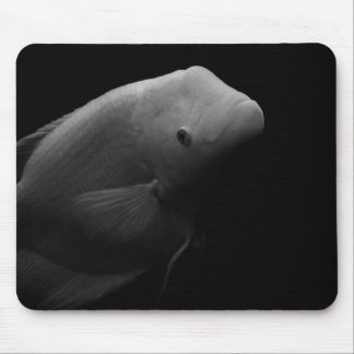 Fish in Tank - Black and White Art Photograph Mouse Pad