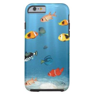Oceans Of Fish iPhone Case