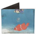 Fish In The Ocean Billfold Wallet