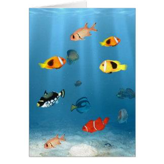 Fish In The Ocean Card