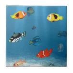 Fish In The Ocean Ceramic Tiles