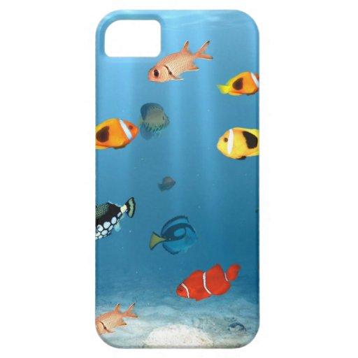 Fish In The Ocean iPhone 5 Case