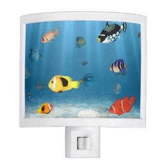 Fish In The Ocean Nite Lites