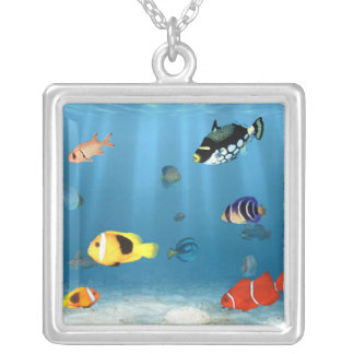 Fish In The Ocean Silver Plated Necklace