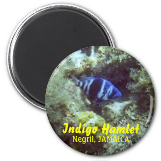 Fish, Indigo Hamlet, Negril, JAMAICA Refrigerator Magnet