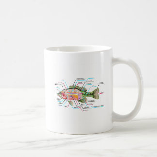 Fish internal organs Vector Art diagram Anatomy Coffee Mug