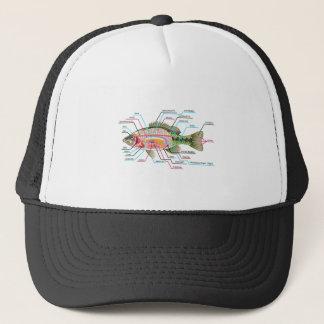 Fish internal organs Vector Art diagram Anatomy Trucker Hat