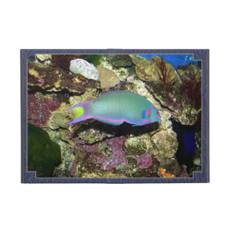 Fish iPad mini case. Covers For iPad Mini