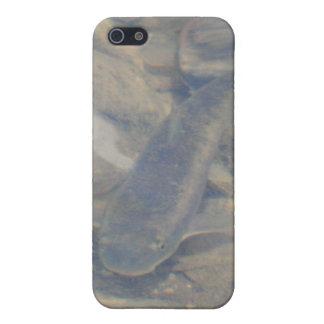 Fish Iphone 4/4s Speck Case