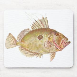 Fish - John Dory - Zeus faber Mouse Pad