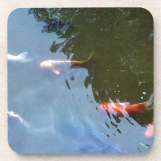 Fish, Koi Carps in pond Coaster
