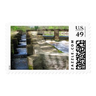 Fish Ladder ~ stamp