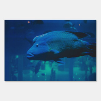 Fish Lawn Sign