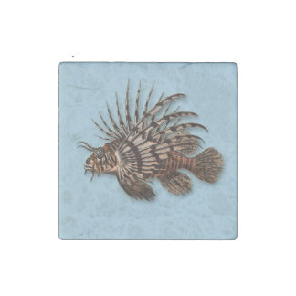 Fish lionfish aquatic seawater aquarium stone magnet