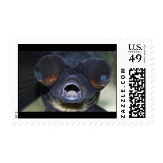 fish lips postage