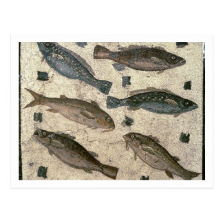 Fish (mosaic) postcard