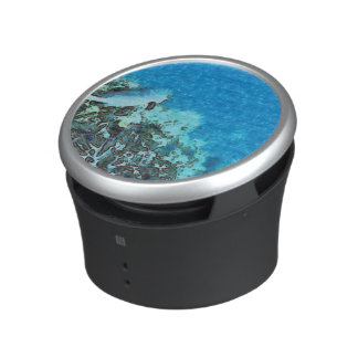 Fish moving over the reef speaker