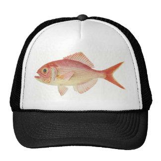 Fish - Nannygai - Trachichthodes affinis Trucker Hat