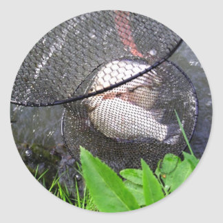 Fish of the Day! Classic Round Sticker