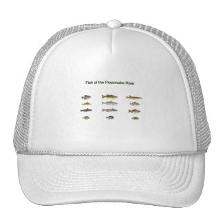 Fish of the Pocomoke River Mesh Hats