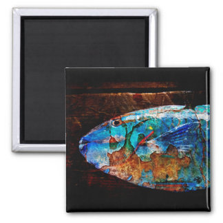 fish on board 2 inch square magnet
