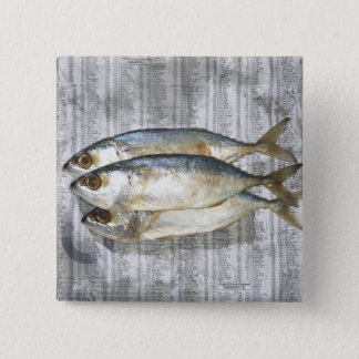 Fish on financial newspaper, elevated view button