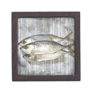Fish on financial newspaper, elevated view gift box
