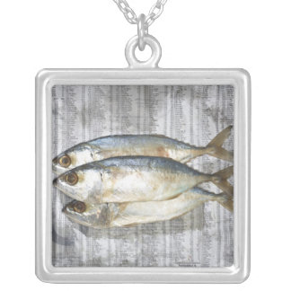 Fish on financial newspaper, elevated view square pendant necklace