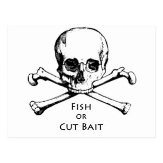 """Fish or Cut Bait"" Jolly Roger Pirate Logo Postcard"