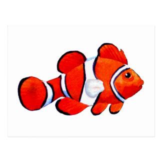 Fish Orange Vero Beach 2010 The MUSEUM Zazzle Gift Postcard