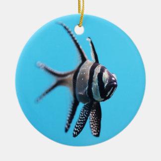 Fish Round Ceramic Decoration