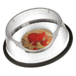 Fish Pet Bowl