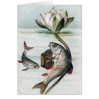 Fish Playing Accordion and Water Lily Greeting Cards