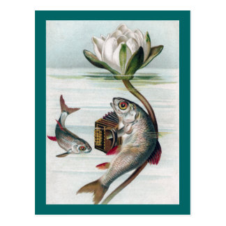 Fish Playing Accordion and Water Lily Postcard