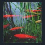 """Fish Pond Bandana<br><div class=""""desc"""">.</div>"""