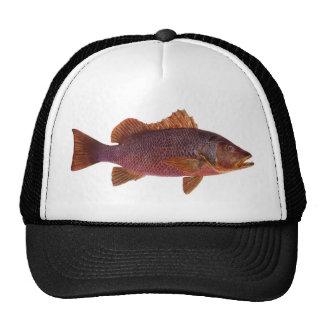 Fish - Purple Sea Perch - Lutjanus superbus Trucker Hat