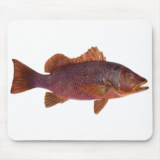 Fish - Purple Sea Perch - Lutjanus superbus Mouse Pad